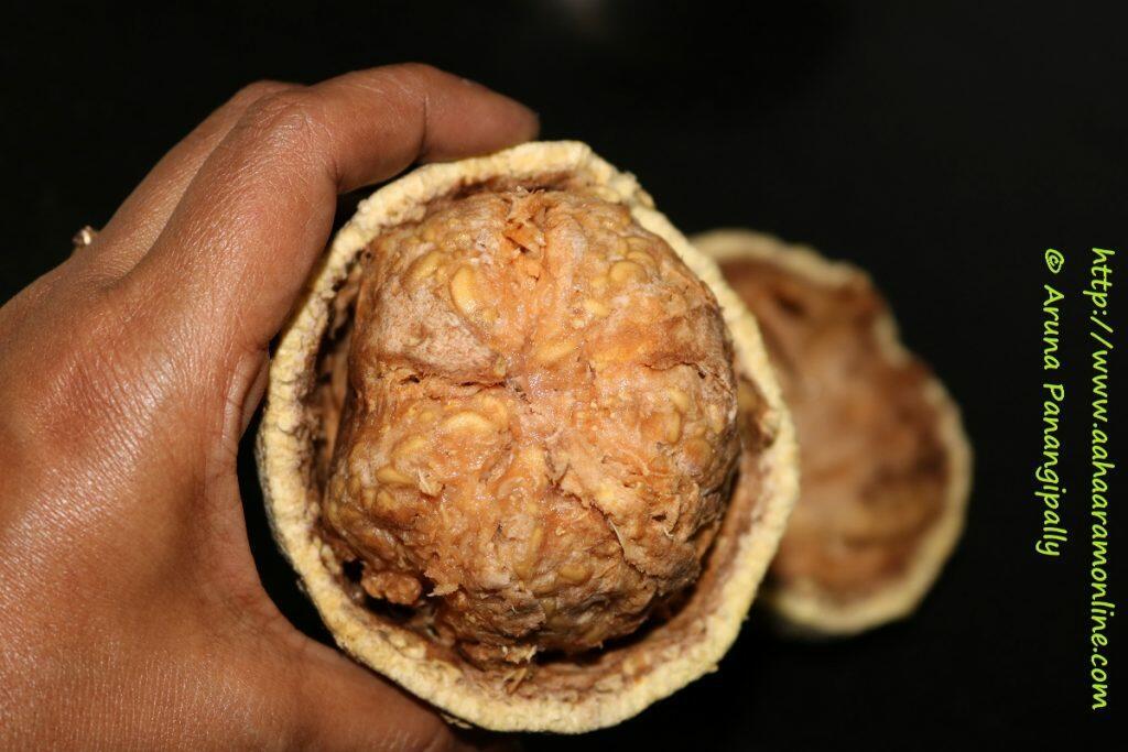 Velakkaya   Wood Apple