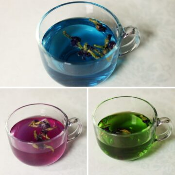 Shankhapushpi Tea or Butterfly Pea Flower Tisane Made 3 Ways: Plain, with Lemon, and with Saffron